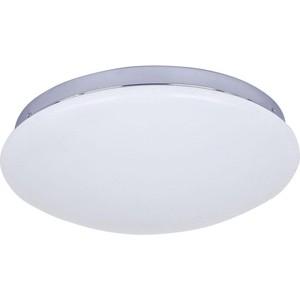 Потолочный светодиодный светильник F-Promo 2464-2C