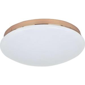 Потолочный светодиодный светильник F-Promo 2465-2C