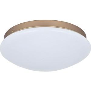 Потолочный светодиодный светильник F-Promo 2466-2C