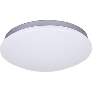 Потолочный светодиодный светильник F-Promo 2467-2C потолочный светильник odeon 3576 2c