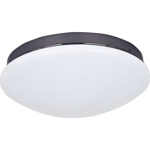 Потолочный светодиодный светильник F-Promo 2468-2C
