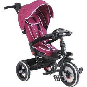 купить Велосипед 3-х колесный Mini Trike Джинс бордовый дешево