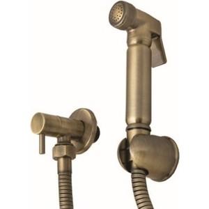 цены на Гигиенический набор Kaiser с вентилем металл, бронза (SH-332 Rel/An)  в интернет-магазинах