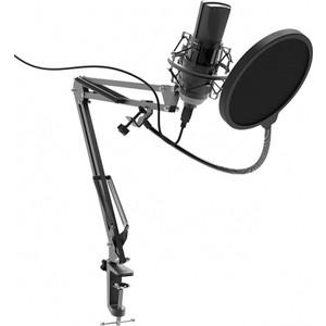 Микрофон Ritmix RDM-180 black