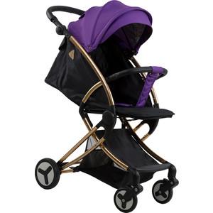 Коляска прогулочная Farfello Aimile Summer Gold фиолетово-черный FPG-1