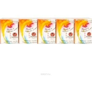 Носовые платочки MANEKI Sumi-e с ароматом фруктов 10х10 шт