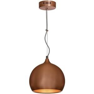 Подвеcной светильник Lussole GRLSN-6106-01