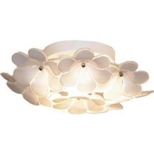 Потолочный светильник Lussole GRLSA-5107-03