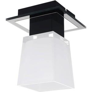 Потолочный светильник Lussole GRLSC-2507-01 люстра lussole lente grlsc 2507 09 e14 54 вт
