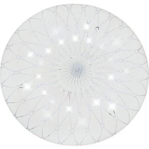 Светильник накладной. IMAGE PLC.230/12W/008 LED 12W 220V 4200K 960Lm D230 мм