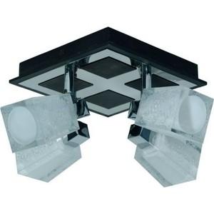 Светильник Спот Imex SP.008-34-08 4*40Вт G9 Wenge цена
