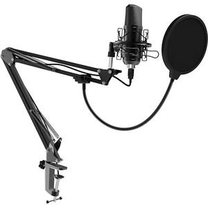 Настольный микрофон для записи голоса и вокала Ritmix RDM-169 USB
