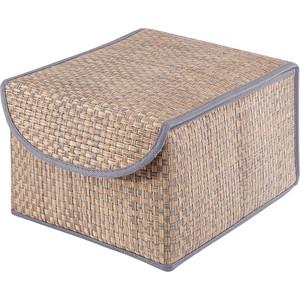 Коробка для хранения с крышкой Casy Home Bo-011 синяя