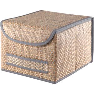 Коробка для хранения с крышкой Casy Home ВО-031 синяя
