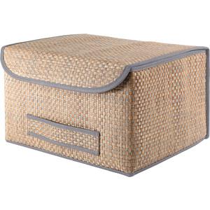 Коробка для хранения с крышкой Casy Home ВО-041 синяя