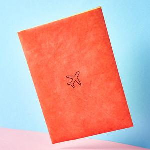 Обложка на паспорт New Wallet a