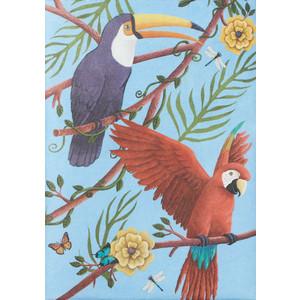 Обложка на паспорт New Wallet joyparrots, попугаи