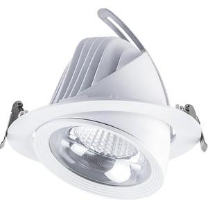 Встраиваемый светодиодный светильник Feron AL250 32606