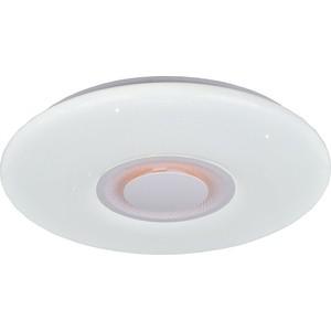 Светодиодный светильник Profit Light 2255/500-80W RGB