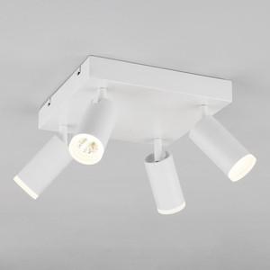 Потолочный светодиодный светильник Eurosvet Holly 20067/4 LED белый