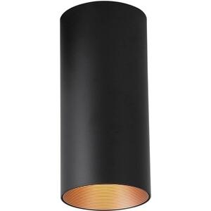 Потолочный светодиодный светильник Favourite 2249-1U