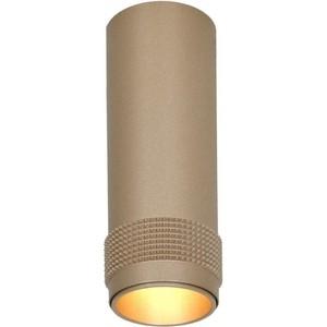 Потолочный светильник Favourite 2455-1C