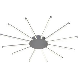 Потолочный светодиодный светильник Favourite 2379-12U