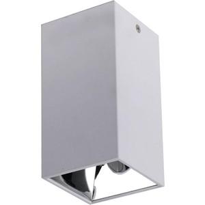Потолочный светодиодный светильник Favourite 2401-1U