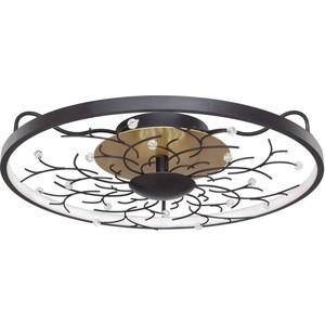 Потолочный светодиодный светильник Favourite 2520-6C
