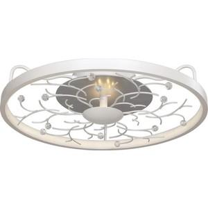Потолочный светодиодный светильник Favourite 2533-4C