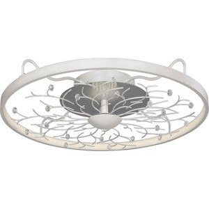 Потолочный светодиодный светильник Favourite 2533-6C
