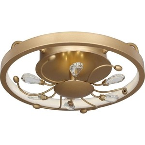Потолочный светодиодный светильник Favourite 2534-2C потолочный светильник odeon 3576 2c