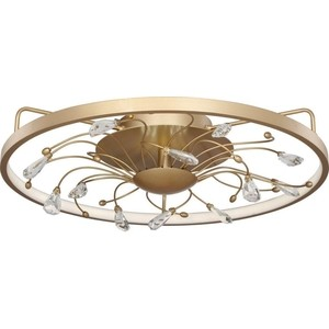 Потолочный светодиодный светильник Favourite 2534-5C