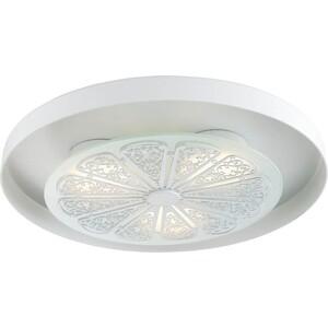 Потолочный светодиодный светильник Favourite 2601-3C