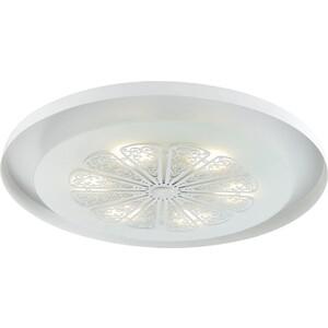 Потолочный светодиодный светильник Favourite 2601-5C