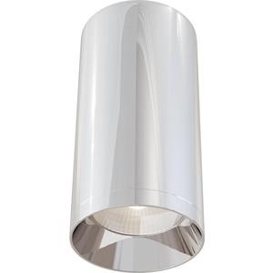 Потолочный светильник Maytoni C010CL-01CH