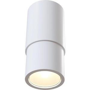 Потолочный светильник Maytoni C033WL-01W
