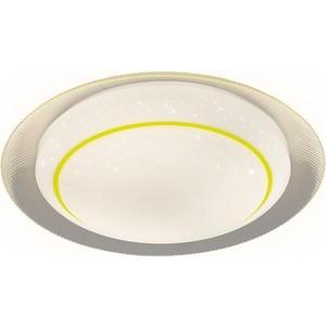 Потолочный светодиодный светильник Ambrella light F46 YL 48W D450