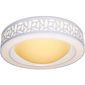 Потолочный светодиодный светильник Ambrella light F210 WH 96W D520 фото