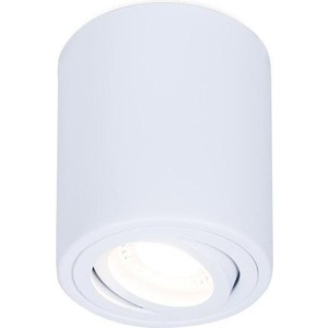 Потолочный светильник Ambrella light TN225
