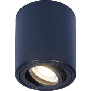 Потолочный светильник Ambrella light TN226