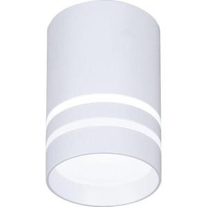 Потолочный светодиодный светильник Ambrella light TN235