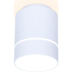 Потолочный светодиодный светильник Ambrella light TN256
