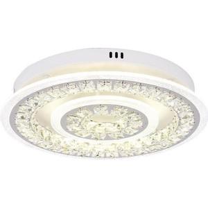 Потолочный светодиодный светильник Ambrella light FA154