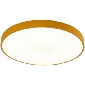 Потолочный светильник Artelamp A2661PL-1YL