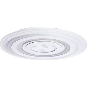 Потолочный светодиодный светильник Artelamp A1397PL-1CL