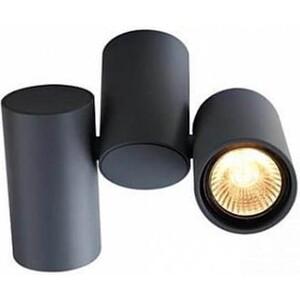 Спот Arte Lamp A1511PL-2GY цена 2017