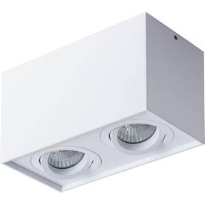 Потолочный светильник Artelamp A5544PL-2WH
