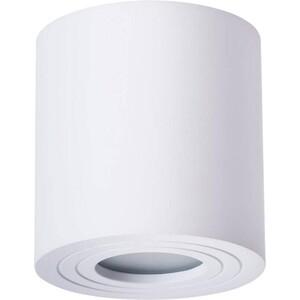 Потолочный светильник Artelamp A1460PL-1WH