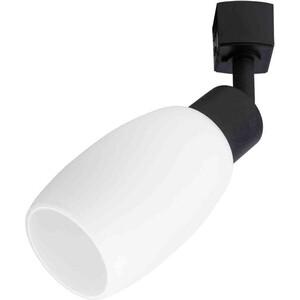 Трековый светильник Artelamp A3055PL-1BK a1582lt 1bk gamba настольный светильник